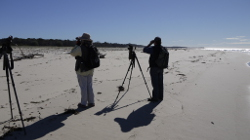 Monitoring birds on Stradbroke Island Photo by Greg Miller