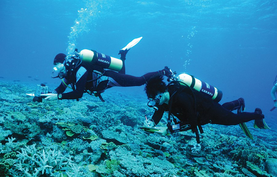 Great barrier reef monitoring
