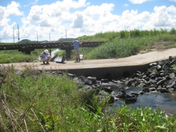 Monitoring Photo by Reef Catchments