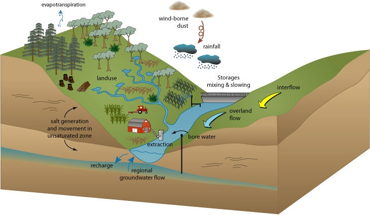 aquatic ecosystems information Restoration of aquatic ecosystems outlines a national strategy for aquatic restoration, with practical recommendations, and features case studies of aquatic restoration activities around the country the committee examines.
