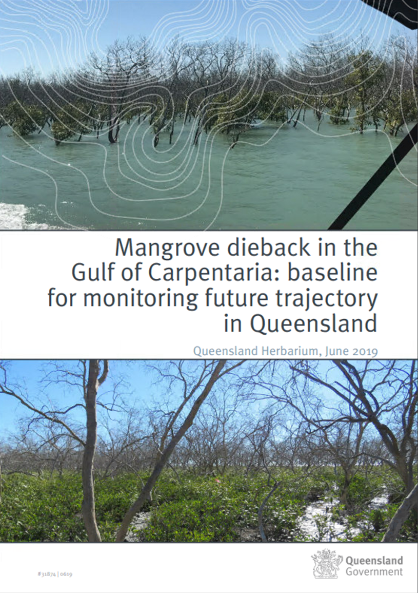 Click on image to view the Mangrove dieback in the Gulf of Carpentaria Map Story