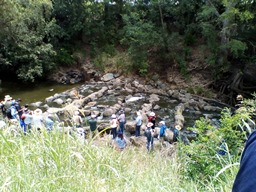 Rehabilitation includes rock placement to help fish move up and downstream  Photo by Queensland Government
