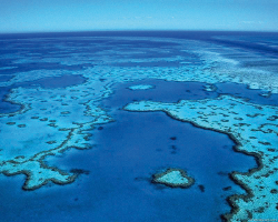 Great Barrier Reef  Photo by Queensland Government