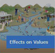 Effects on values – how waste pollution affects us and our environment