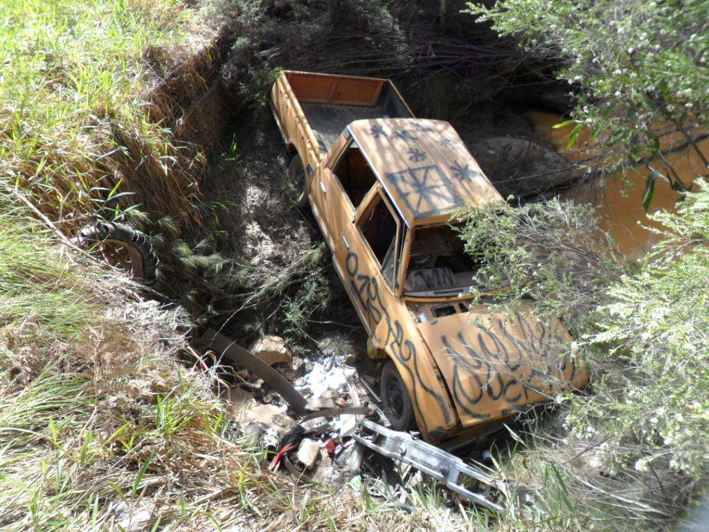 Car dumped in Beerburrum forestry area Photo by Queensland Government