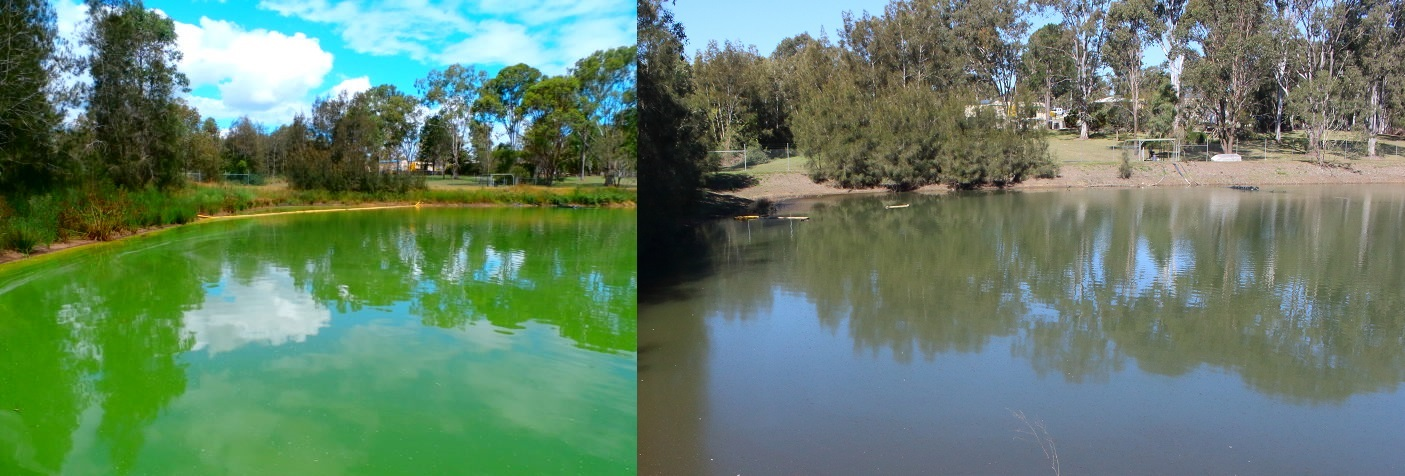 Before and after photo of water body. Photo by Simon Tannock