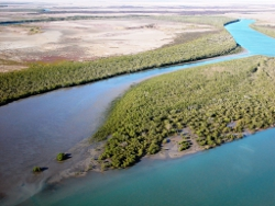 Spring Creek estuary Photo by Roger Jaensch Wetlands International